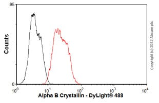 Flow Cytometry - Anti-Alpha B Crystallin antibody [1B6.1-3G4] (ab13496)