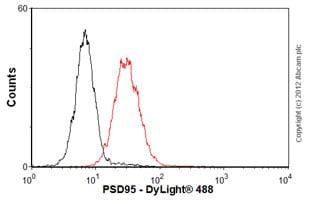 Flow Cytometry - Anti-PSD95 antibody [7E3-1B8] - Synaptic Marker (ab13552)
