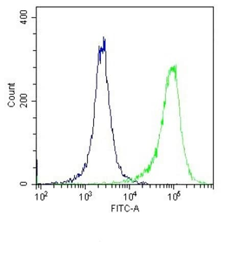 Flow Cytometry - Anti-TLR4 antibody (ab13556)
