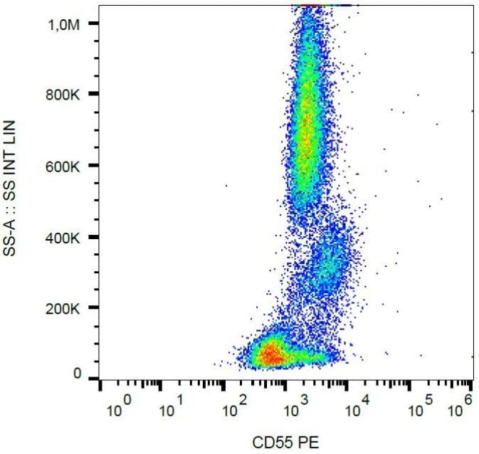 Flow Cytometry - PE Anti-CD55 antibody [MEM-118] (ab130421)
