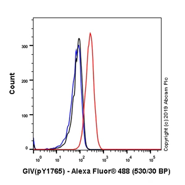 Flow Cytometry - Anti-GIV (phospho Y1765) antibody [SP158] (ab130424)