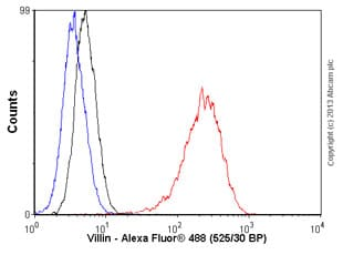 Flow Cytometry - Anti-Villin antibody [SP145] (ab130751)