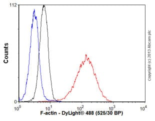 Flow Cytometry - Anti-F-actin antibody [4E3.adl] (ab130935)