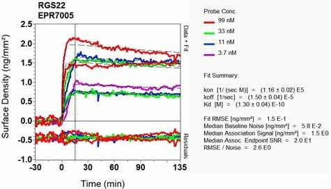 OI-RD Scanning - Anti-RGS22 antibody [EPR7005] (ab131048)