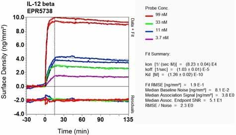 OI-RD Scanning - Anti-IL-12 p40 antibody [EPR5738] (ab131156)