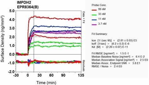 Other - Anti-IMPDH2 antibody [EPR8364(B)] (ab131158)