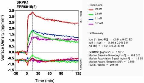 OI-RD Scanning - Anti-SRPK1 antibody [EPR6915(2)] (ab131160)