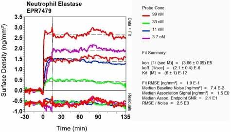 OI-RD Scanning - Anti-Neutrophil Elastase antibody [EPR7479] (ab131260)