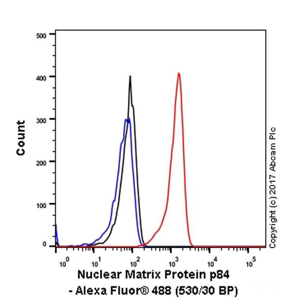 Flow Cytometry - Anti-Nuclear Matrix Protein p84 antibody [EPR5662(2)] (ab131268)