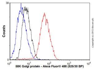 Flow Cytometry - Anti-58K Golgi protein antibody [EPR7908] (ab131275)