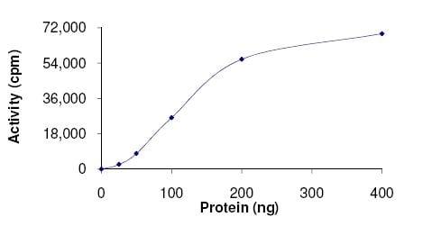 Functional Studies - Recombinant human Heme-regulated inhibitor protein (ab131665)