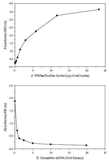 Functional Studies - PPAR alpha Transcription Factor Assay Kit (ab133107)