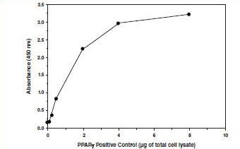 Transcription Factor Binding Assay for PPAR gamma