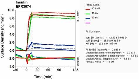 Other - Anti-Insulin antibody [EPR3074] (ab133281)