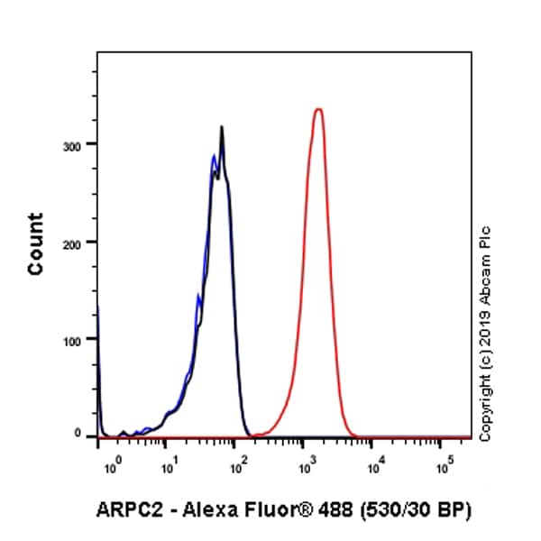 Flow Cytometry - Anti-ARPC2 antibody [EPR8533] (ab133315)