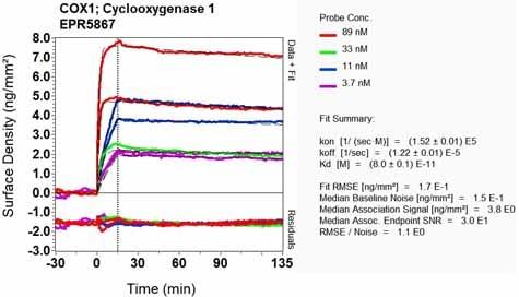 OI-RD Scanning - Anti-COX1 / Cyclooxygenase 1 antibody [EPR5867] (ab133319)