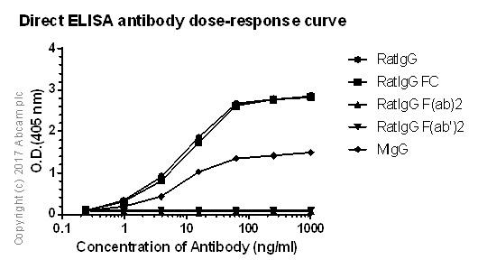ELISA - Anti-IgG antibody [RIGG-69] (ab133470)