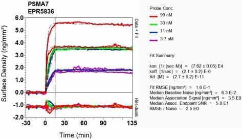 Other - Anti-PSMA7/HSPC antibody [EPR5836] (ab133502)