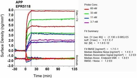 OI-RD Scanning - Anti-Amyloid Precursor Protein antibody [EPR5118] (ab133509)