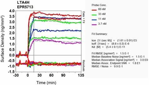OI-RD Scanning - Anti-Leukotriene A4 hydrolase/LTA4H antibody [EPR5713] (ab133512)