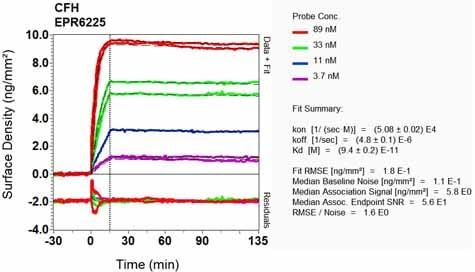 Other - Anti-Factor H antibody [EPR6225] (ab133536)