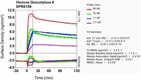 Other - Anti-HDAC6 antibody [EPR6159] (ab133541)