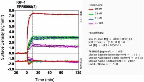 OI-RD Scanning - Anti-IGF1 antibody [EPR5098(2)] (ab133542)