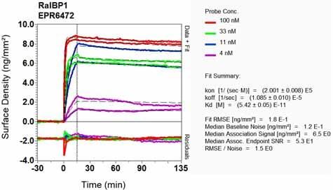 Other - Anti-RALBP1 antibody [EPR6472] (ab133549)