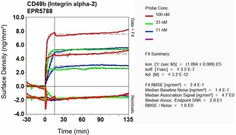OI-RD Scanning - Anti-Integrin alpha 2 antibody [EPR5788] (ab133557)