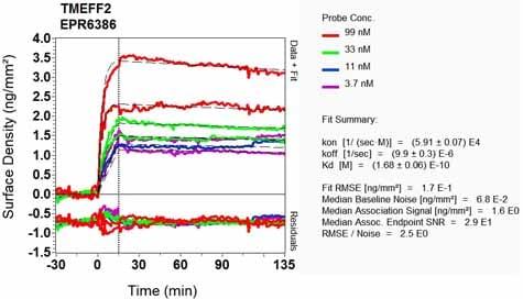 OI-RD Scanning - Anti-TMEFF2 antibody [EPR6386] (ab133562)