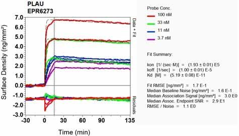 OI-RD Scanning - Anti-Urokinase antibody [EPR6273] (ab133563)
