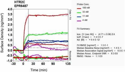 Other - Anti-5HT2C Receptor antibody [EPR6487] (ab133570)