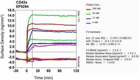 Other - Anti-CD42a/GP-IX antibody [EP5294] (ab133573)