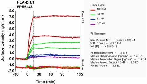 OI-RD Scanning - Anti-HLA Class II DRB1 antibody [EPR6148] (ab133578)