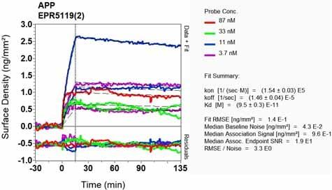 Other - Anti-Amyloid Precursor Protein antibody [EPR5119(2)] (ab133588)