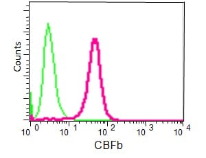 Flow Cytometry - Anti-CBFb antibody [EPR6322] (ab133600)