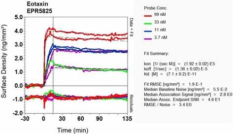 OI-RD Scanning - Anti-Eotaxin antibody [EPR5825] (ab133604)