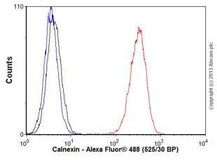 Flow Cytometry - Anti-Calnexin antibody [EPR3633(2)] - ER Membrane Marker (ab133615)