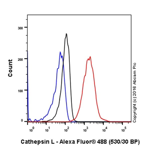 Flow Cytometry - Anti-Cathepsin L/V/K/H antibody [EPR8011] (ab133641)