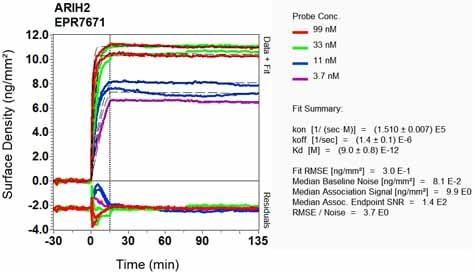 Other - Anti-ARIH2/TRIAD1 antibody [EPR7671] (ab133653)