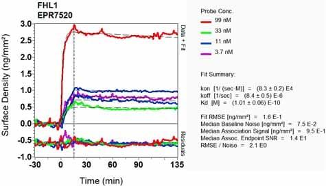 OI-RD Scanning - Anti-FHL1 antibody [EPR7520] (ab133661)