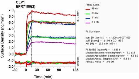 OI-RD Scanning - Anti-CLP1 antibody [EPR7180(2)] (ab133669)