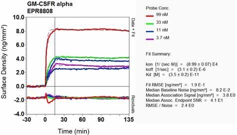 Other - Anti-CD116 antibody [EPR8808] (ab133678)