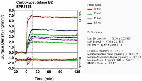 Other - Anti-Carboxypeptidase B2 antibody [EPR7858] (ab133679)