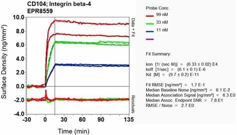 OI-RD Scanning - Anti-Integrin beta 4 antibody [EPR8559] (ab133682)