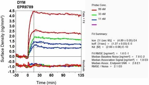 OI-RD Scanning - Anti-Dymeclin antibody [EPR8789] (ab133685)