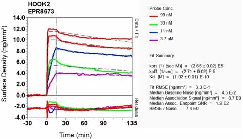 OI-RD Scanning - Anti-HOOK2 antibody [EPR8673] (ab133691)