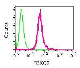 Flow Cytometry - Anti-FBXO2 antibody [EPR7328(2)] (ab133717)