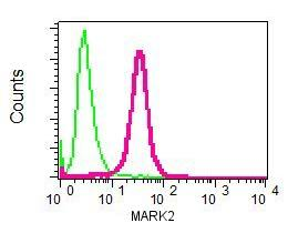 Flow Cytometry - Anti-MARK2 antibody [EPR8553] (ab133724)