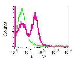 Flow Cytometry - Anti-Netrin G2 antibody [EPR4570(2)] (ab133732)
